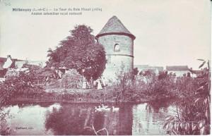 carte postale ancienne - 8 la tour du blois fleuri